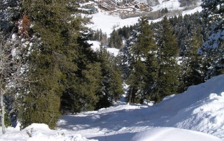 Aspen Mountain_05