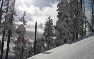 Montana Snowbowl_05