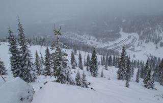 Mt. Shasta (7)